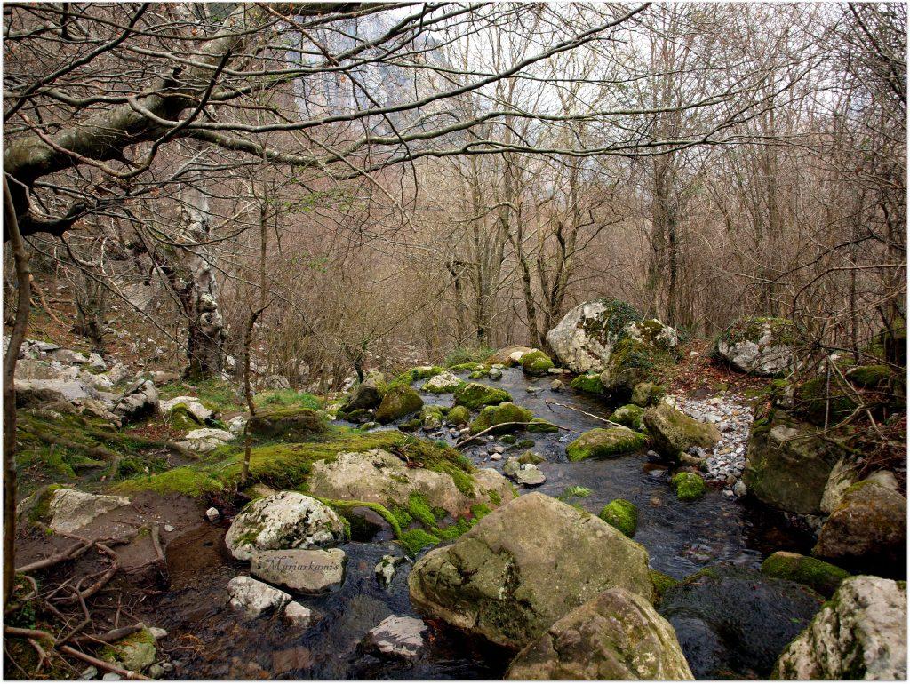 Santuario-de-la-Bien-Aparecida-1024x706 De ruta por los valles de Ason y Soba Rutas   Vista-Valle-1024x768 De ruta por los valles de Ason y Soba Rutas   Iglesia-San-Pedro-1024x768 De ruta por los valles de Ason y Soba Rutas   Cristo-de-Limpias-770x1024 De ruta por los valles de Ason y Soba Rutas   Ria-de-Limpias-1024x770 De ruta por los valles de Ason y Soba Rutas   P3119033-1024x770 De ruta por los valles de Ason y Soba Rutas   IMG_20170311_132102-770x1024 De ruta por los valles de Ason y Soba Rutas   IMG_20170311_131600-1024x770 De ruta por los valles de Ason y Soba Rutas   P3119037-1024x770 De ruta por los valles de Ason y Soba Rutas