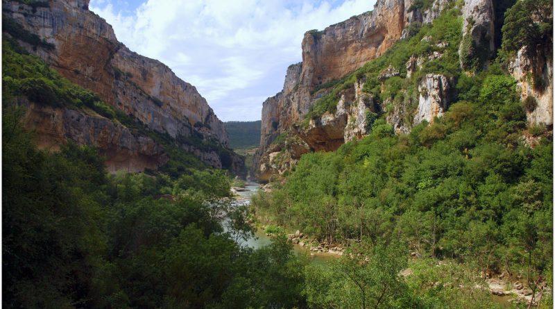 P7080418-1-800x445 Navarra. Dia 1: Foz de Lumbier y Selva de Irati Viajes