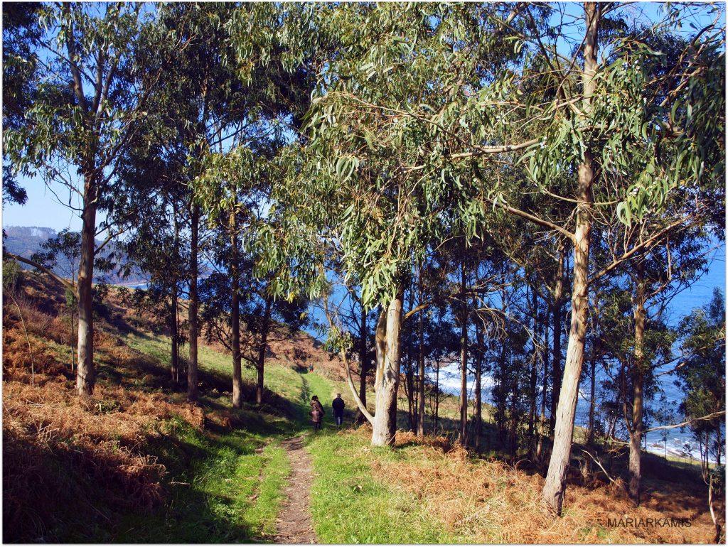 Acantilados358-1024x770 Asturias - De Ribadesella a Lastres (I) Viajes