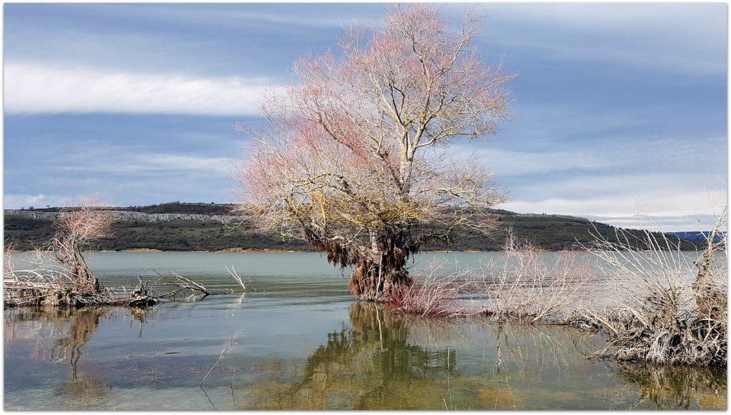 La-Catedral-de-los-Peces206-1024x581 Rodeando el Embalse del Ebro Rutas