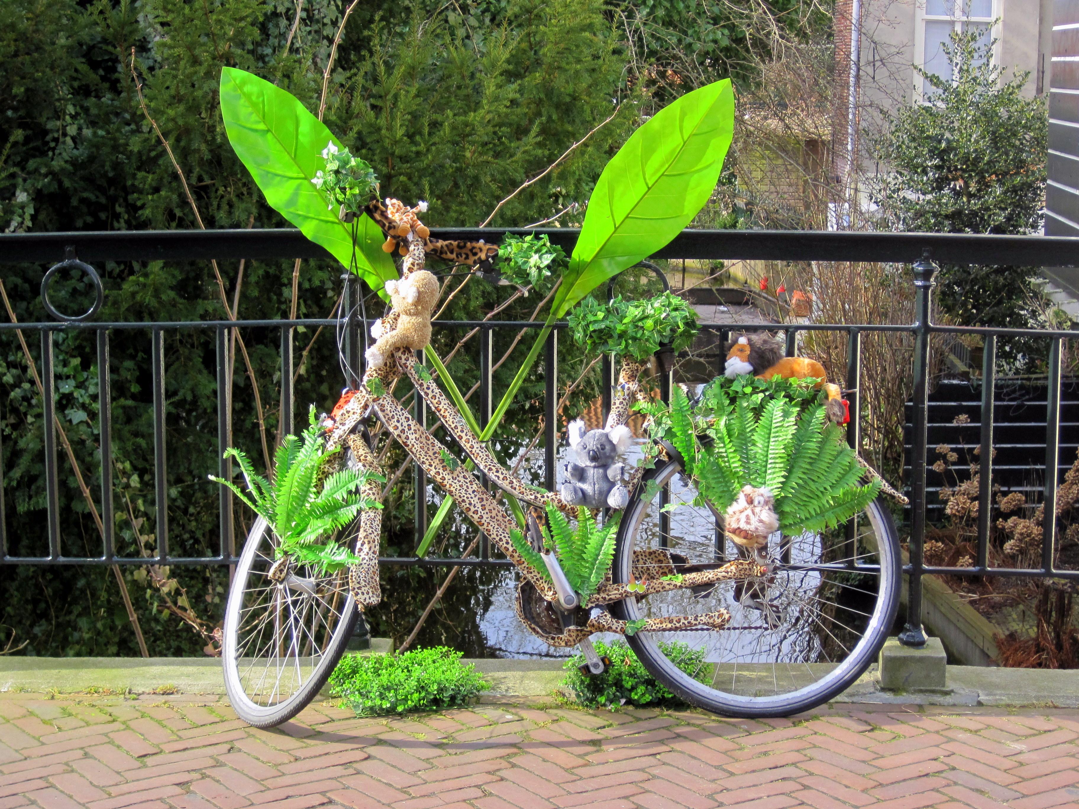 IMG_8773 Edam. Voledam. Barrio Jordaam (Amsterdam) Viajes