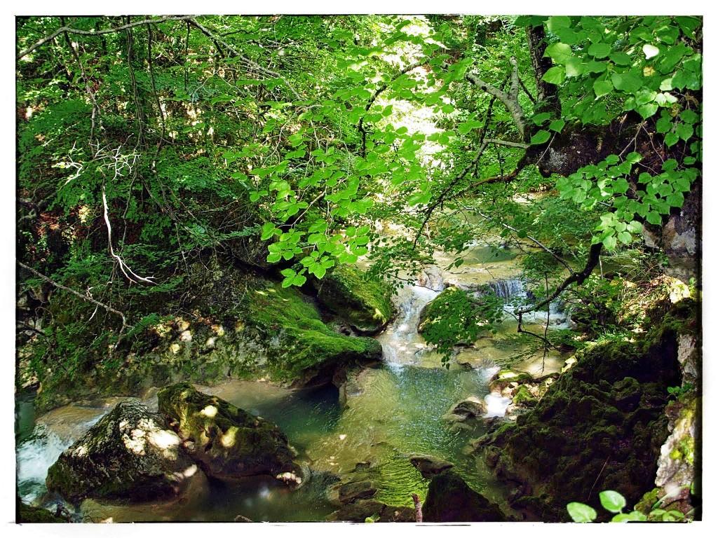 P7185787-1024x768 Sierra de Urbasa. Urederra y Bosque Encantado (I) Rutas