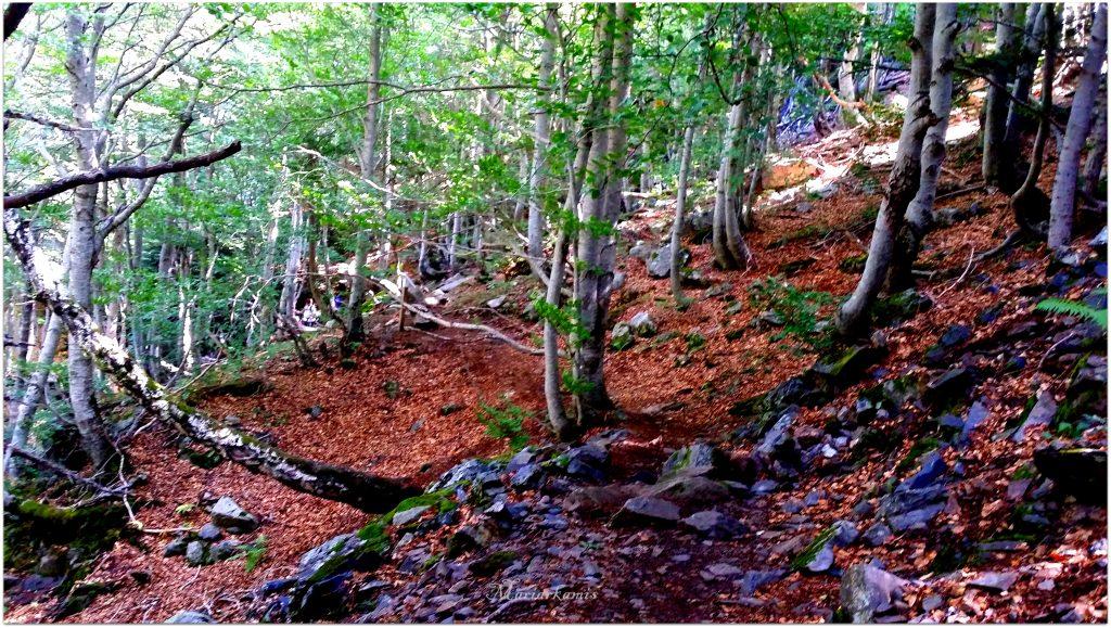 20160818_121022-1024x579 Valle de Benasque. Gorgas del Alba. Viajes