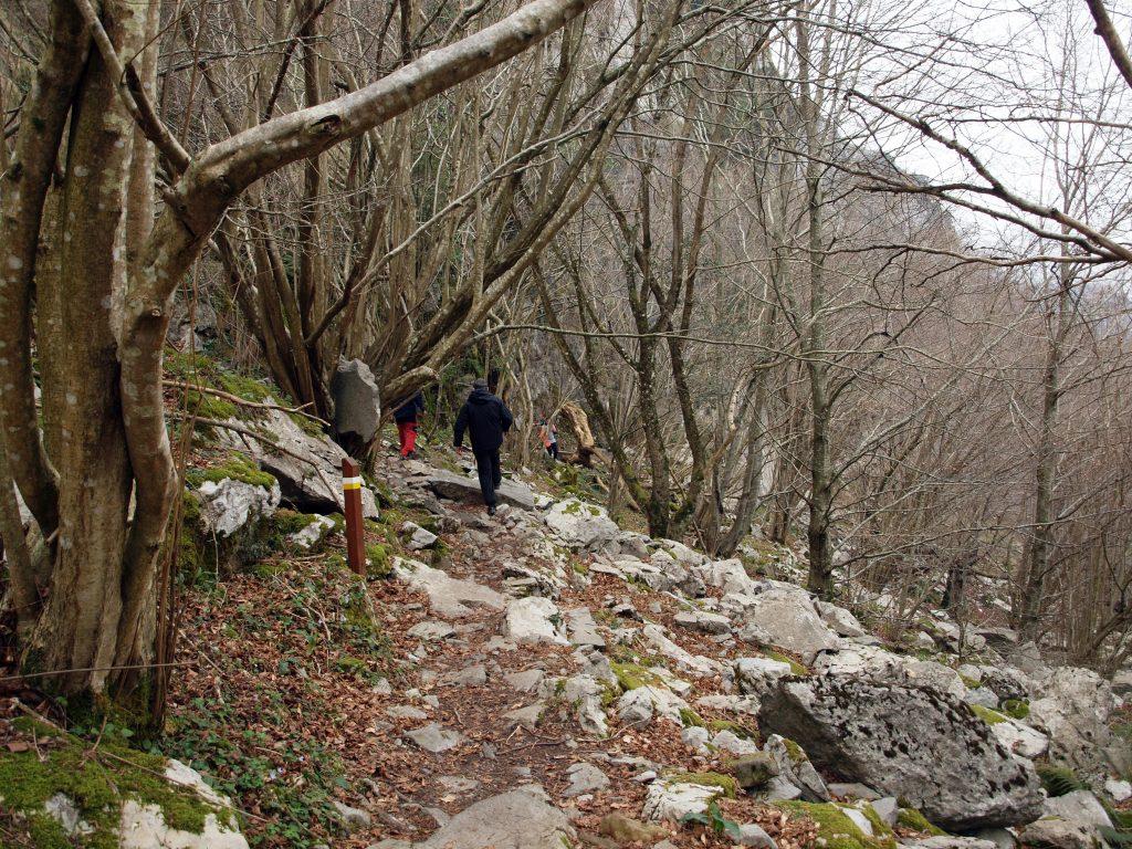 P3119039-1024x768 De ruta por los valles de Ason y Soba Rutas