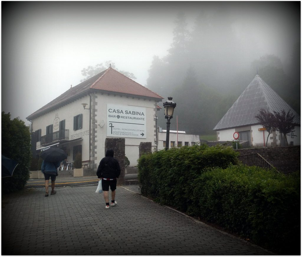 IMG_20170708_191008-1024x870 Navarra. Dia 1: Foz de Lumbier y Selva de Irati Viajes