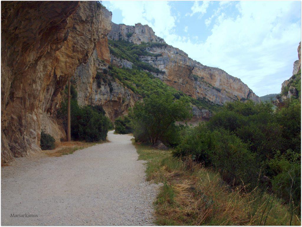P7080417-1-1024x769 Navarra. Dia 1: Foz de Lumbier y Selva de Irati Viajes