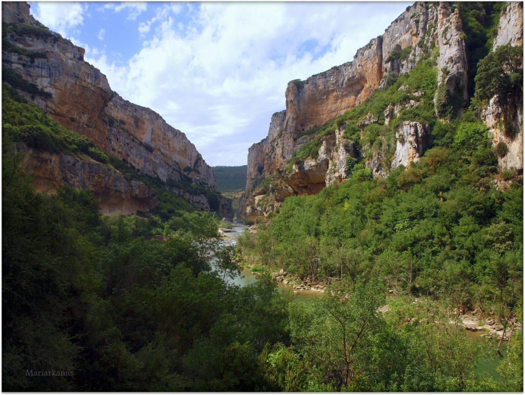 P7080418-1-1024x770 Navarra. Dia 1: Foz de Lumbier y Selva de Irati Viajes