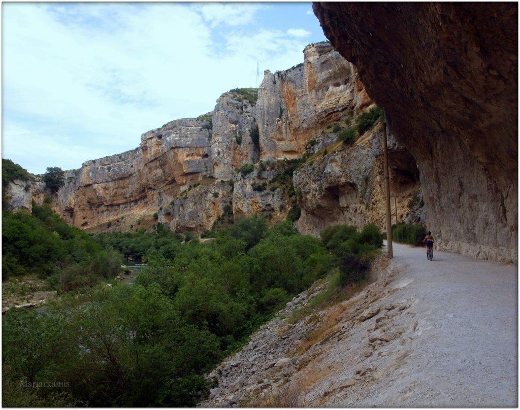 P7080421-1-1024x808 Navarra. Dia 1: Foz de Lumbier y Selva de Irati Viajes