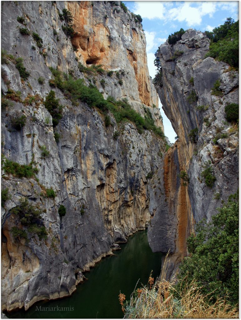 P7080429-2-771x1024 Navarra. Dia 1: Foz de Lumbier y Selva de Irati Viajes