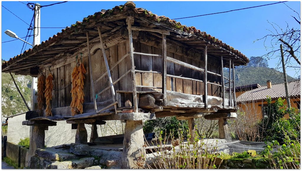 Cueves916-1024x581 Asturias - De Ribadesella a Lastres (I) Viajes