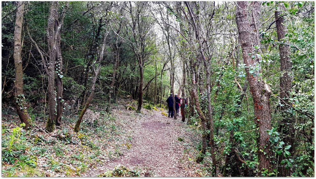 Hocinos1922-1024x581 Ruta de las Pasarelas - Desfiladero de los Hocinos Rutas
