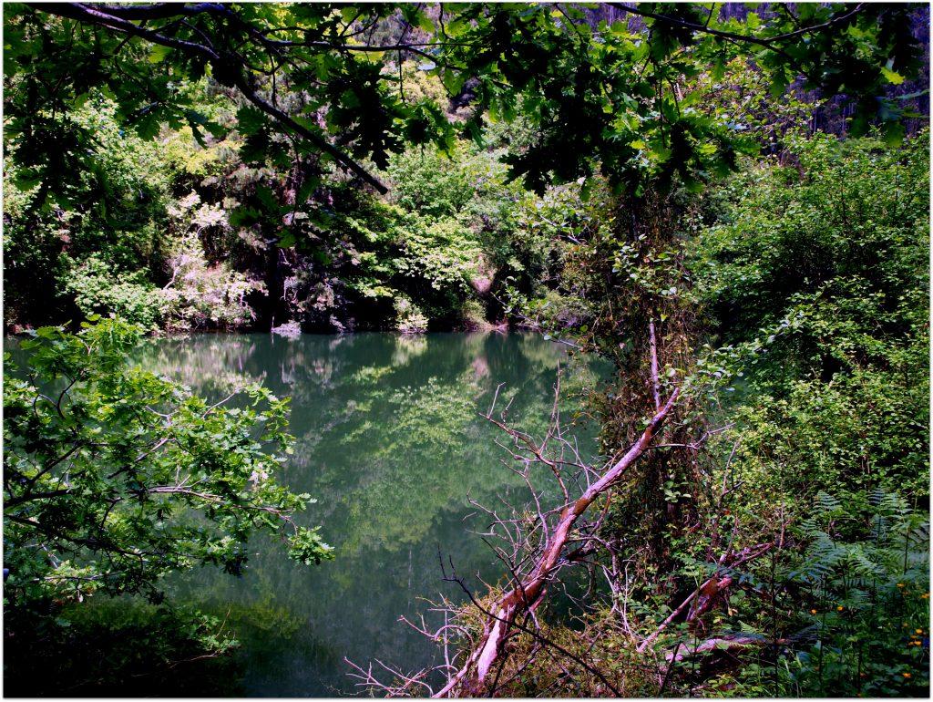 P5012745-1024x770 Camino del Agua - Ruta El Regato Rutas