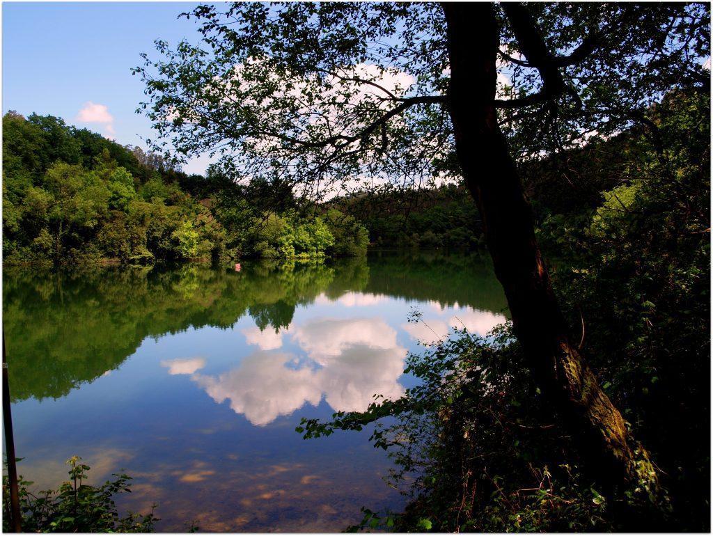 P5012750-1024x770 Camino del Agua - Ruta El Regato Rutas