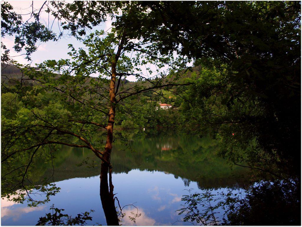 P5012754-1024x770 Camino del Agua - Ruta El Regato Rutas