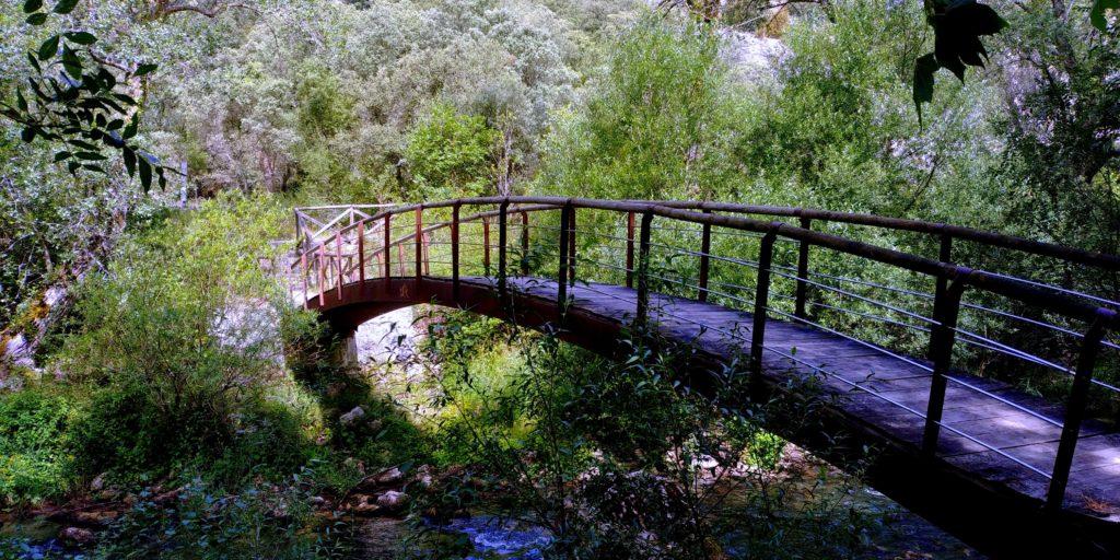 20190731_120832-1024x512 Burgos - Ruta Paseo del Río Oca Rutas