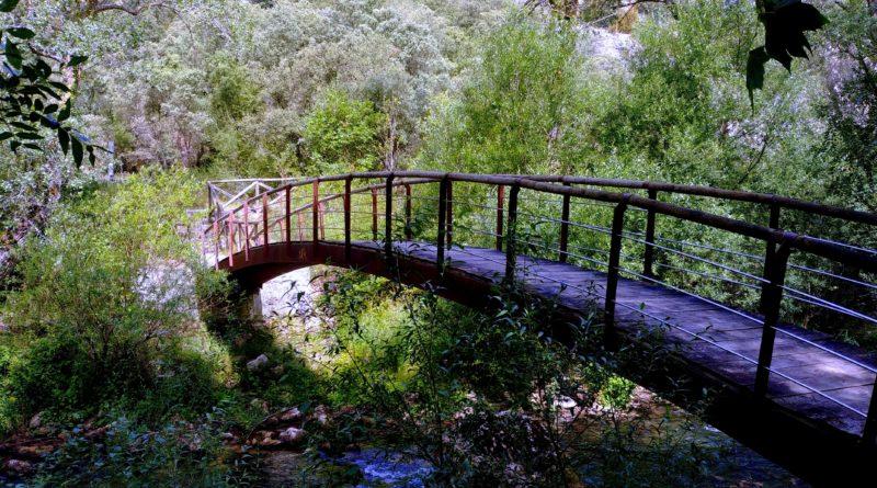 20190731_120832-800x445 Burgos - Ruta Paseo del Río Oca Rutas