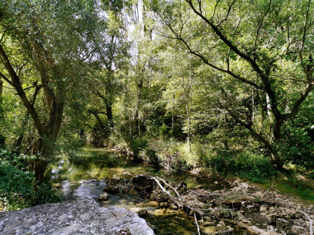 IMG_20190731_120420-1024x768 Burgos - Ruta Paseo del Río Oca Rutas