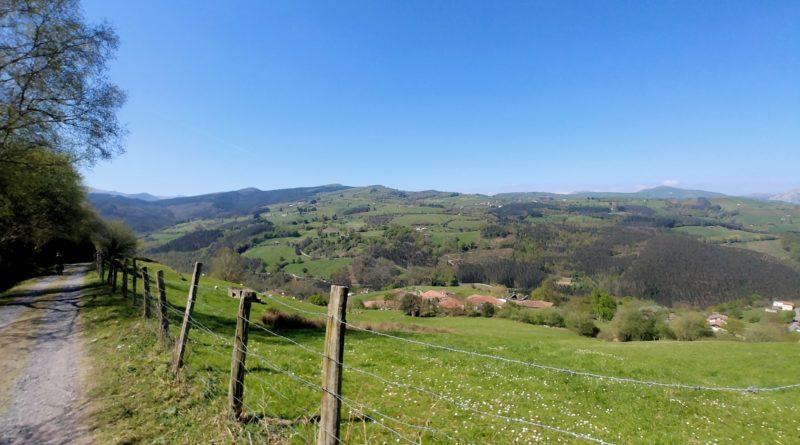 20210405_142716-01-800x445 El hayedo de Balgerri, el más extenso de Bizkaia Rutas