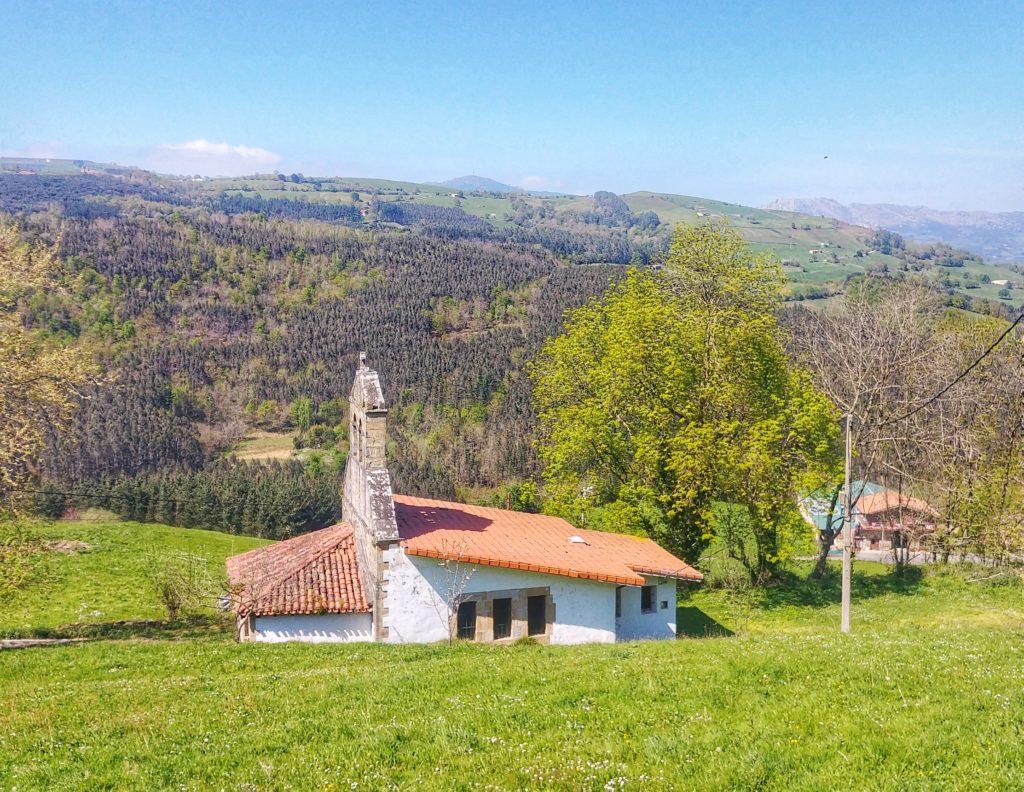 20210405_151525-01-1024x792 El hayedo de Balgerri, el más extenso de Bizkaia Rutas